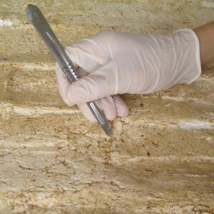 Curăţarea depunerilor, adezivilor pe bază de cleiuri animale folosite ca adeziv, pe verso.