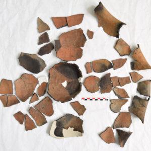 Imagine de ansamblu după curățarea fragmentelor.