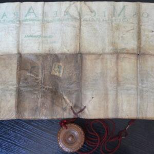 Verso-ul pergamentului după rehidratare.