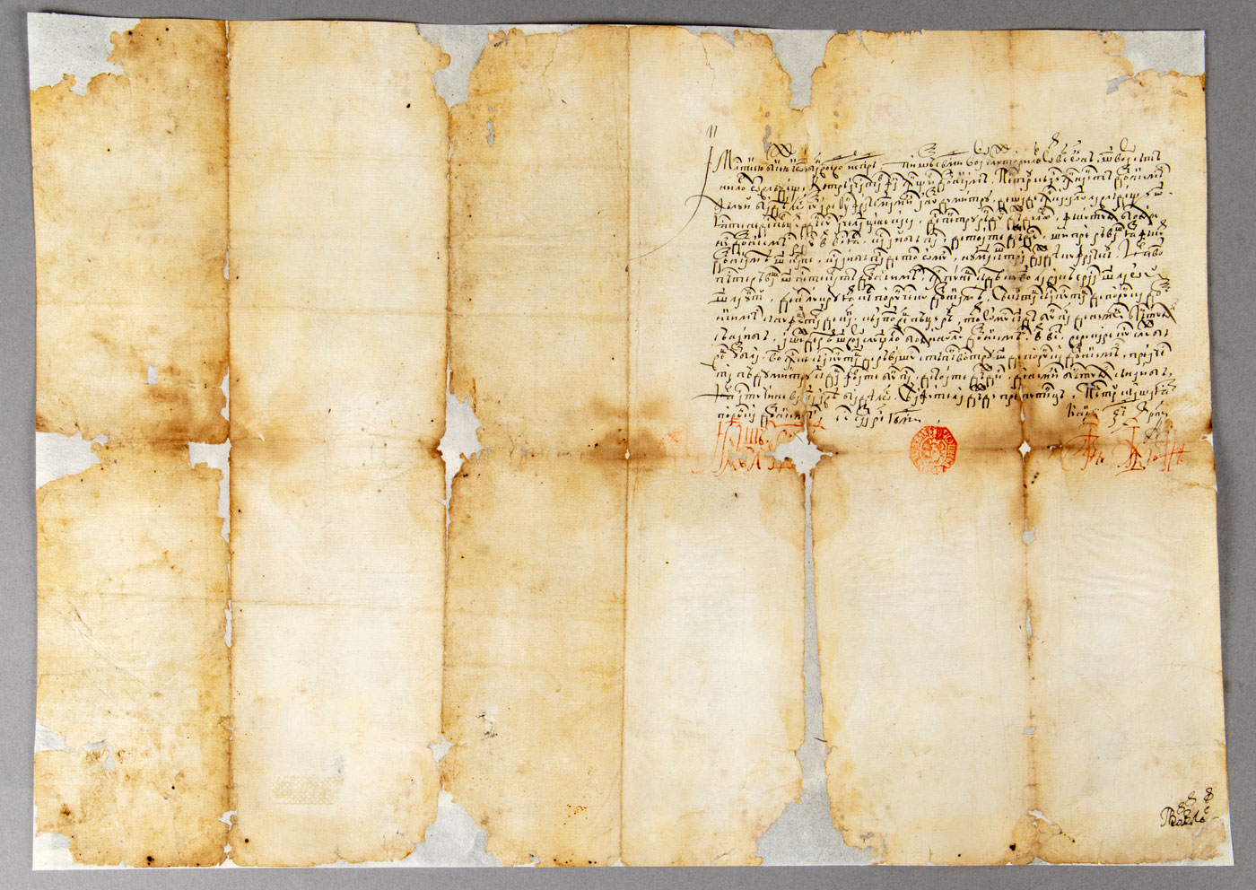 Documentul după restaurare