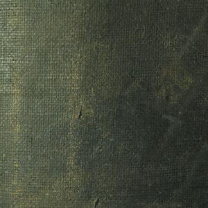 Detaliu înainte de restaurare - eroziuni ale peliculei de culoare.